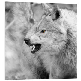 Hartschaumbild  Wolf - Stephanie Wittenburg