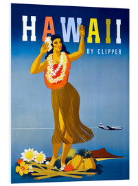 Hartschaumbild  Hawaii von Clipper Vintage Reisen - Travel Collection