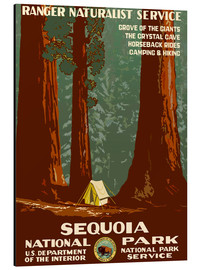 Alubild  Sequoia National Park - Travel Collection