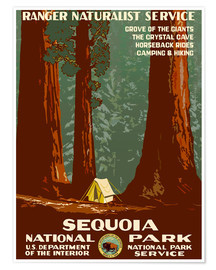 Premium-Poster Sequoia National Park