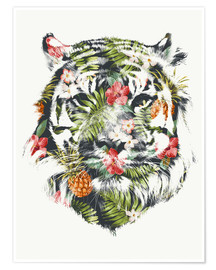Poster  Tropical tiger - Robert Farkas