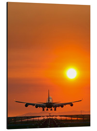Alubild  Aeroplane landing at sunset - David Nunuk