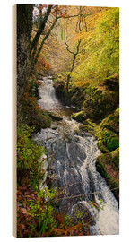 Holzbild  Lynmouth-Fluss mit Wald - Keith Wheeler