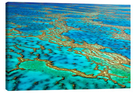 Leinwandbild  Great Barrier Reef, Australien - I. Schulz