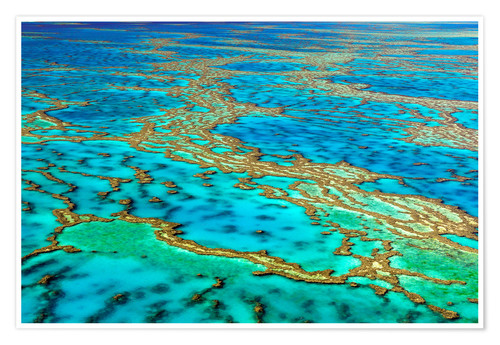 Premium-Poster Great Barrier Reef, Australien