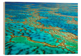 Holzbild  Great Barrier Reef, Australien - I. Schulz