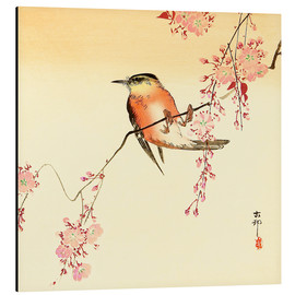 Obraz na aluminium  Red bird and cherry blossom - Ohara Koson