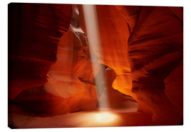 Leinwandbild  Oberer Antelope Canyon - David Wall