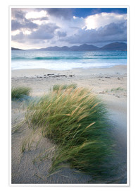 Premium-Poster  Strand bei Luskentyre - Lee Frost