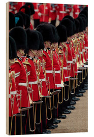 Hans-Peter Merten - Soldiers at Trooping the Colour 2012, The Queen's Birthday Parade, Horse Guards, Whitehall, London,