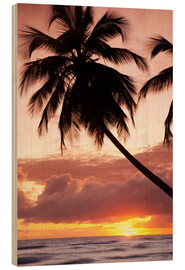 Holzbild  Tropical sunset, Bridgetown, Barbados, West Indies, Caribbean, Central America - Angelo Cavalli