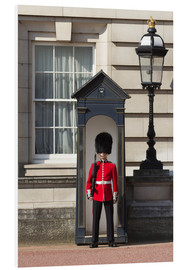 Forex  Grenadier Guardsman outside Buckingham Palace, London, England, United Kingdom, Europe - Stuart Black
