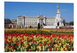 Hartschaumbild  Buckingham Palace and Queen Victoria Monument with tulips, London, England, United Kingdom, Europe - Stuart Black