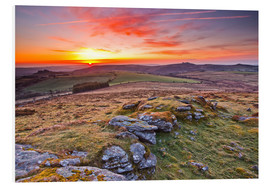 Forex  Morgen im Dartmoor Nationalpark - Julian Elliott