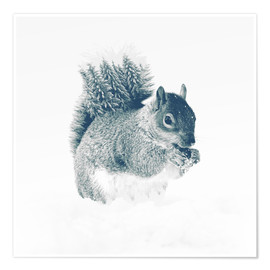 Premium-Poster squirrel