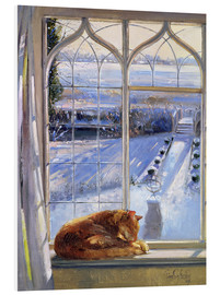 Forex  Katze im Fenster, Winter - Timothy Easton