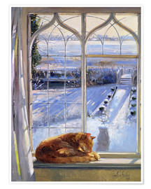 Premium-Poster  Katze im Fenster, Winter - Timothy Easton