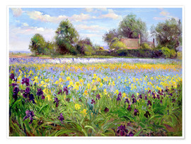 Premium-Poster  Blumenfeld - Timothy Easton