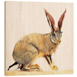 Mark Adlington - Hase