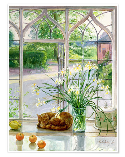 timothy easton schlafende katze im fenster poster online bestellen posterlounge. Black Bedroom Furniture Sets. Home Design Ideas