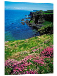 Forex  Dunluce Castle, Irland - The Irish Image Collection