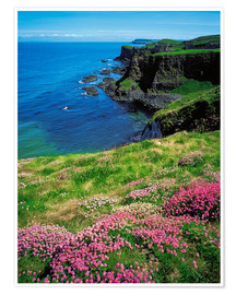 Poster  Dunluce Castle, Irland - The Irish Image Collection