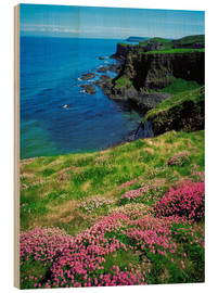 Holzbild  Dunluce Castle, Irland - The Irish Image Collection