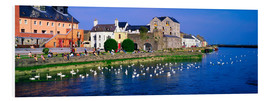 Forex  Co Galway in Irland - The Irish Image Collection
