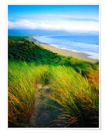Premium-Poster County Kerry