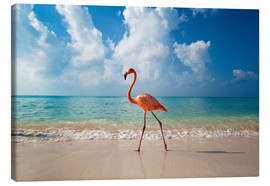 Leinwandbild  Flamingo am Strand - Ian Cuming