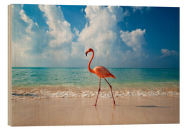 Holzbild  Flamingo am Strand - Ian Cuming