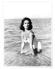 Premium-Poster SUDDENLY LAST SUMMER