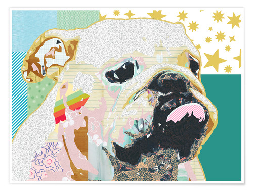 Premium-Poster Bulldogge Collage