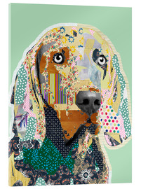 Acrylglasbild  Weimaraner Collage - GreenNest