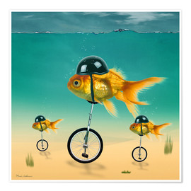 Mark Ashkenazi - Goldfische