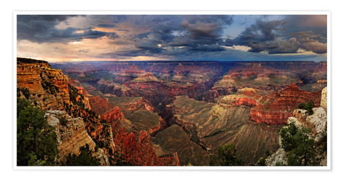 Premium-Poster Grand Canyon Blick