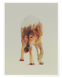 Premium-Poster  Wolf & Wald - Andreas Lie