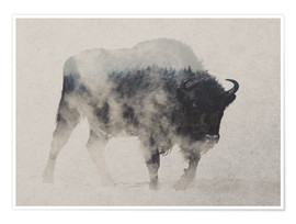 Poster  Bison im Nebel - Andreas Lie