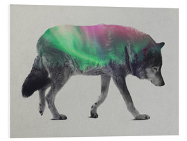 Forex  Wolf in Aurora Borealis - Andreas Lie