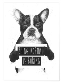 Poster  Being normal is boring - Balazs Solti