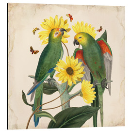 Alubild  Oh My Parrot II - Mandy Reinmuth