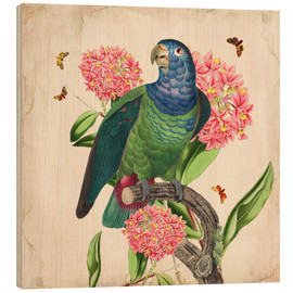 Holzbild  Oh My Parrot IV - Mandy Reinmuth
