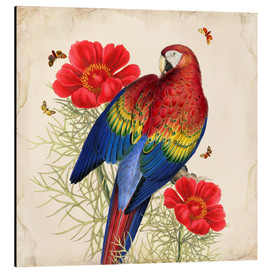 Alubild  Oh My Parrot III - Mandy Reinmuth