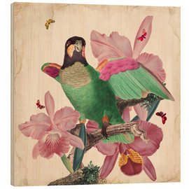 Holzbild  Oh My Parrot VIII - Mandy Reinmuth