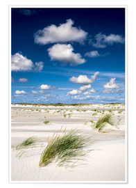 Premium-Poster Amrum Strandimpression