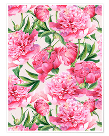 Poster Rosa Pfingstrosen in Aquarell