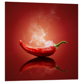 Forex  Red Hot Chili Stillleben - Johan Swanepoel