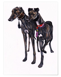 Poster  Brindle Windhunde - Jim Griffiths