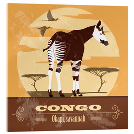 Acrylglas  Kongo - Okapi - Kidz Collection