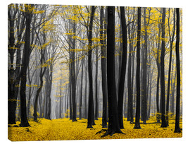 Leinwandbild  Golden Grove - tvurk photography